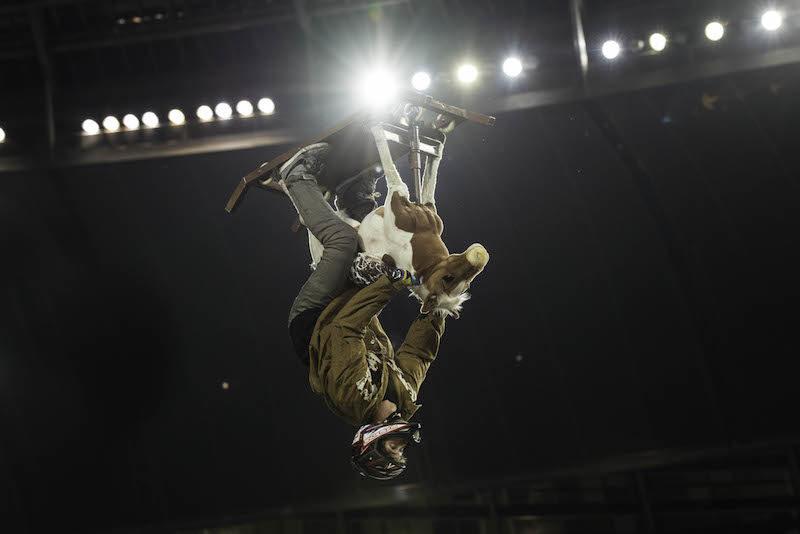 Nitro Circus South Africa