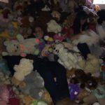 Toy Run Hartbeespoort_2328