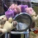 Toy Run Hartbeespoort_2350
