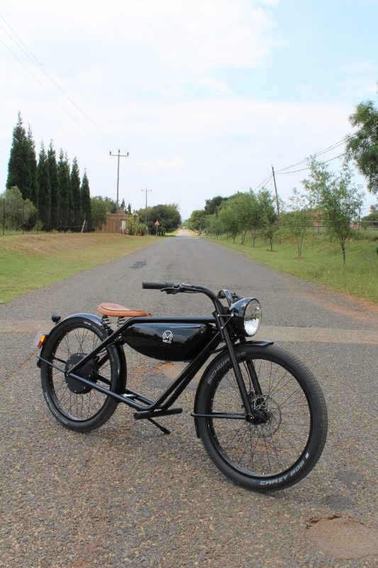 Electric bike review meijs electric motion 3466 (800x533) Meijs Motorman